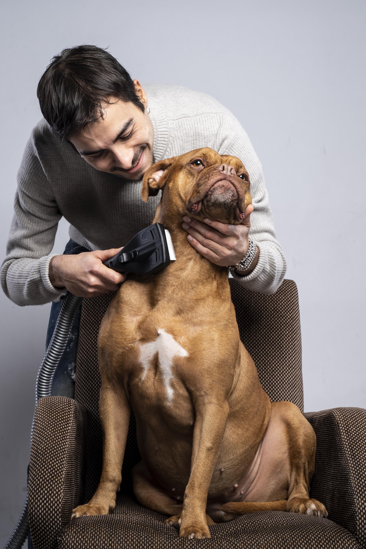 Kit accessori per animali domestici